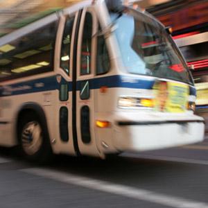 Writer 82 Loses Bus Injury Claim