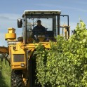 Farm Accidents Fall According To New Stats