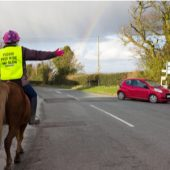 Rise In Horse-Related Road Traffic Accidents